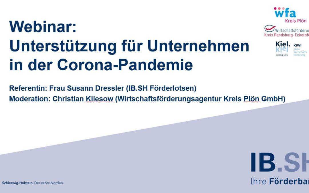 """Webinar """"Unterstützung für Unternehmen in der Corona Pandemie"""""""
